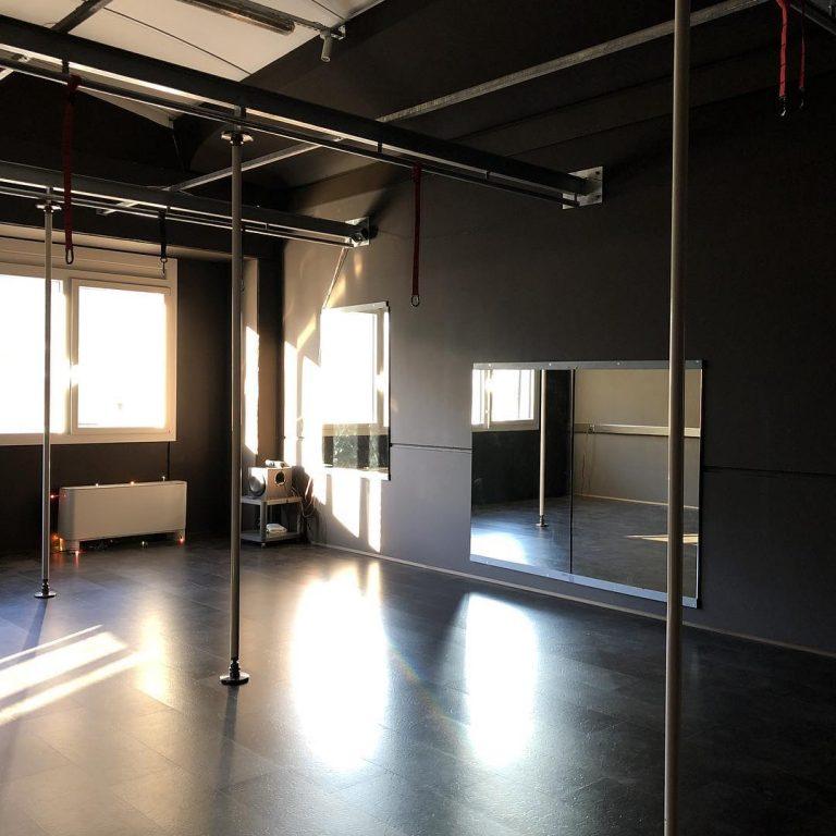 Pole dance room